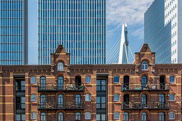 Rotterdam Kop van Zuid van Kok and Kok