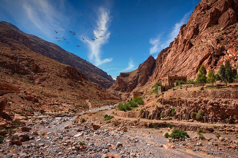 Rivierbedding in de Todra kloof, Marokko van Rietje Bulthuis