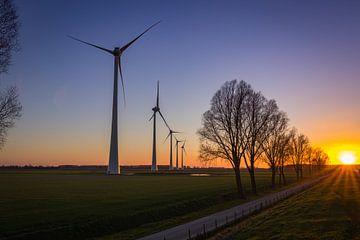 Windmühlen von Frank Bison