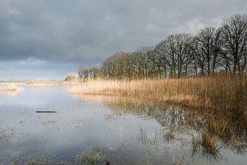 Landschaft, Limburg von Joep Deumes