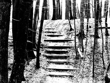 Trap in bos zwart/wit van Angelique Roelofs