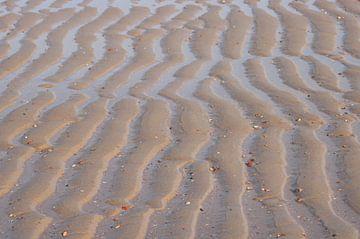 Sporen van de zee von Cinthia Mulders