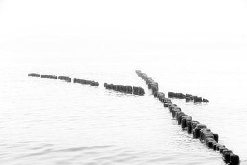 Buhnen im Meer in monochrome von Tilo Grellmann | Photography