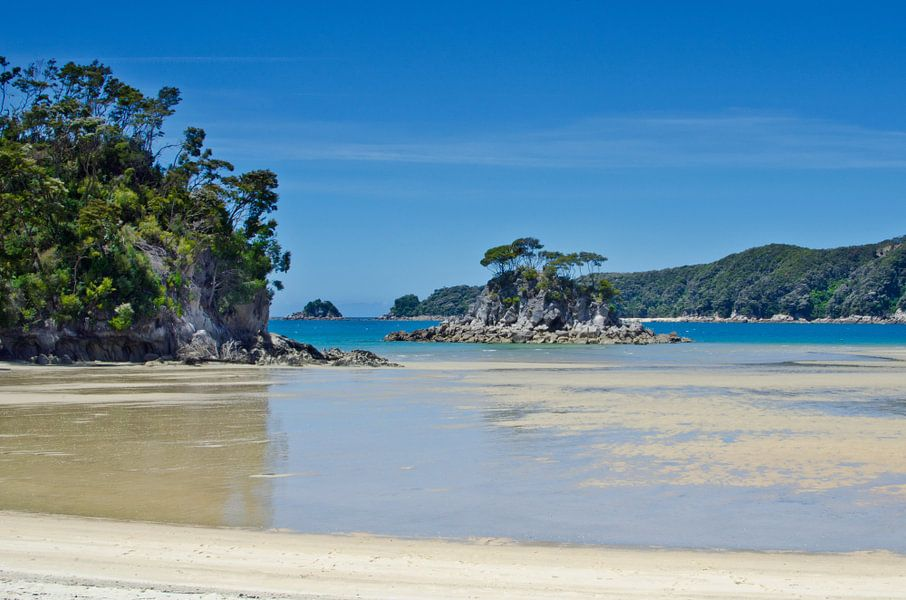 Torrent Bay - Nieuw Zeeland van Ricardo Bouman   Fotografie