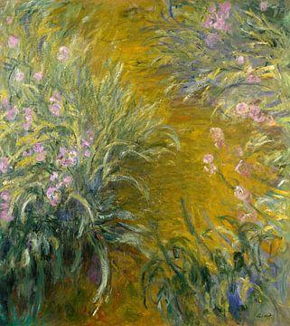 Le passage à travers les iris, Claude Monet sur