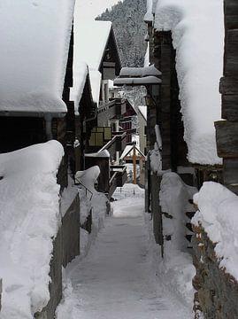 Winter van Ruud V D Kuil