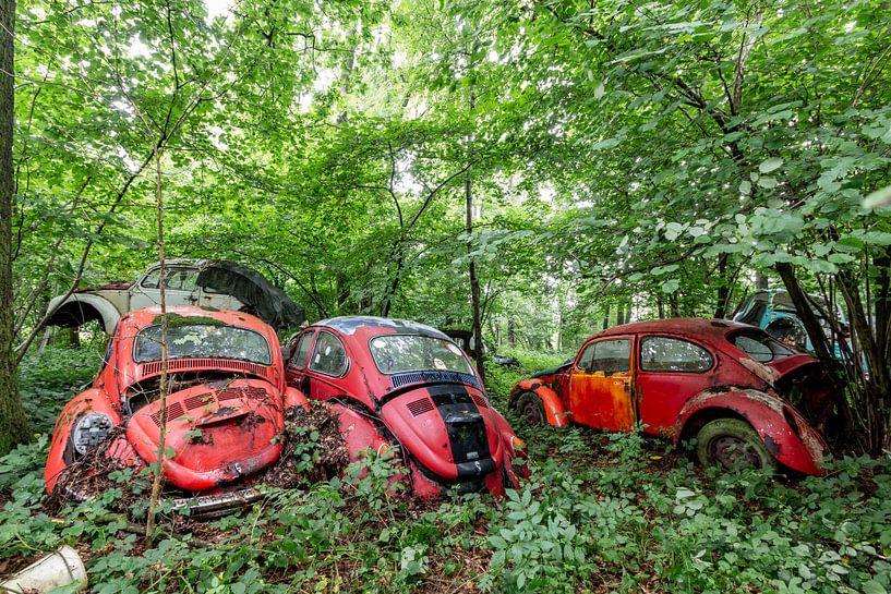 Volkswagen kever van William Linders