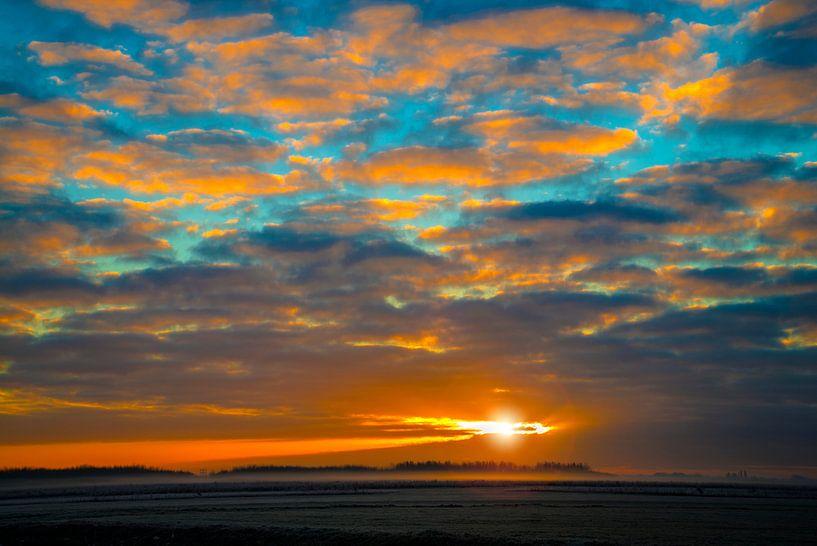 Bentwoud am Morgen von Fred Leeflang