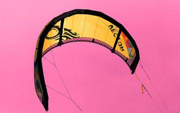 Vliegen als een vogel op de wind van Willy Sybesma