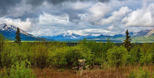 Prachtig uitzicht op de bergen van Alaska