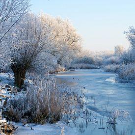 Winter in De Biesbosch van Reinier van de Pol