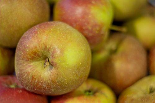 Appels van