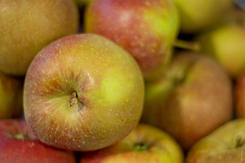 Appels van PJG Design