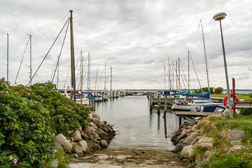 Vejle Fjord - Gezicht op de jachthaven van Rosenvold van Tony Buijse