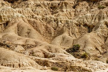 De Bardenas Reales van dichtbij van Ineke Huizing