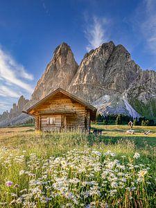 Alpenhut met bloemen en bergpanorama in de Alpen in Tirol/Dolomieten. van Voss Fine Art Fotografie