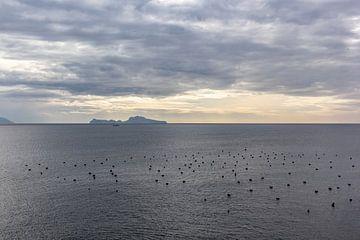 Die Aussicht in Neapel von Joy Mennings