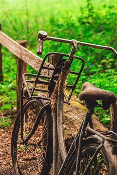 verlassenes und verrostetes Fahrrad in den Wäldern von Rinaldo Ten zijthoff