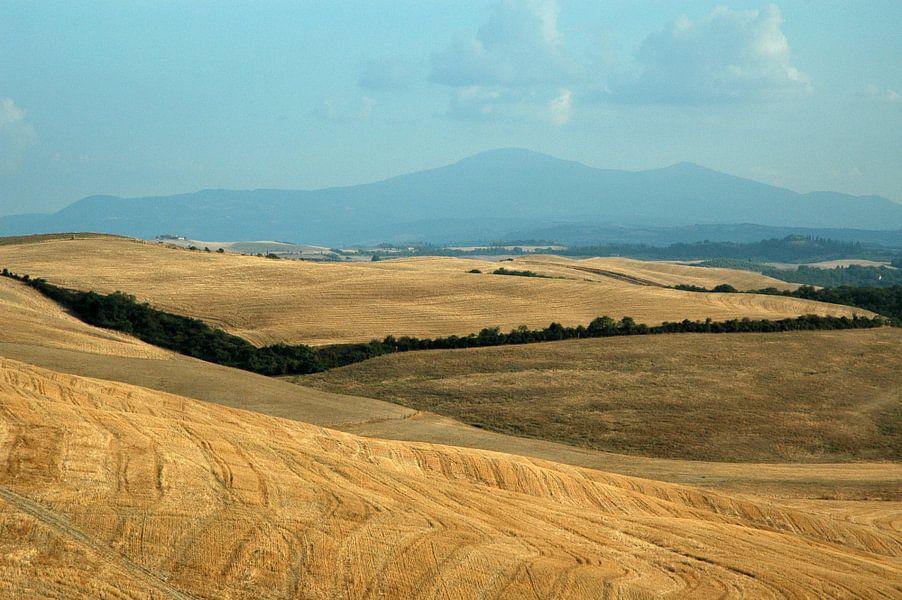 Toscaans landschap van Barbara Koppe