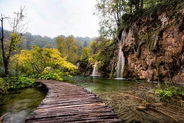 Het pad van Plitvice van Roy Poots