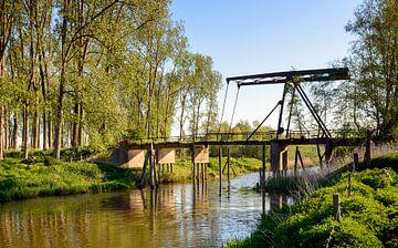 Abgelaufene Zugbrücke über einen Biesbosch Bach von Ruud Morijn