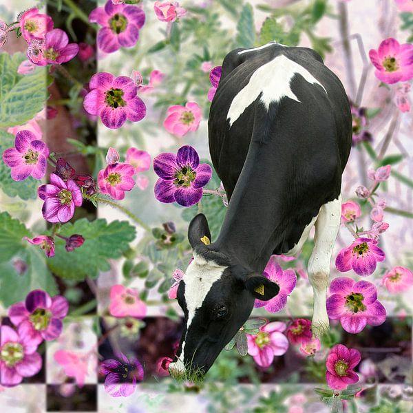 Koe in de bloemenwei van Ina Hölzel