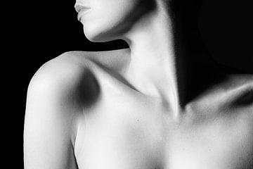 shadows von marjolein Parijs