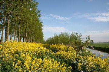 Frühlingsferien von A'da de Bruin