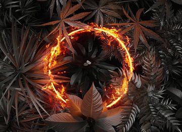 Kreis Frame in Feuer und Flammen über tropische Pflanzen von Besa Art