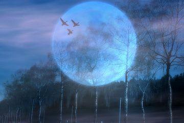 Nachtflug van Vera Laake