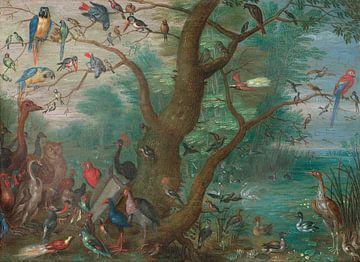 Konzert der Vögel, Jan van Kessel