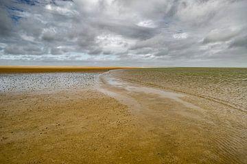 strand van Joep Deumes