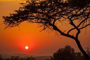 Prachtige zonsopkomst in Zuid-Afrika