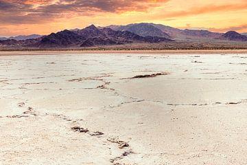 Zoutmeer in de sheephole vallei wildernis Mojave woestijn in Californië USA van Dieter Walther