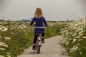 Meisje fietsend door een  bloemen zee