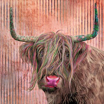 Schotse Hooglander in een vrolijk jasje van Dennisart Fotografie