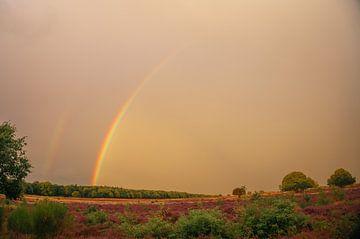 De dubbele regenboog van Lisa Jansen