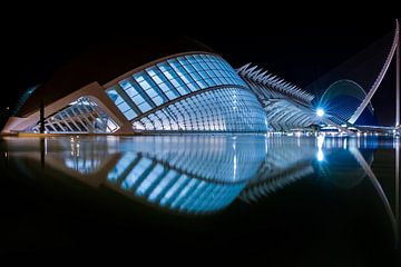 Ciudad de las Artes y las Ciencias, Valencia, bij nacht van