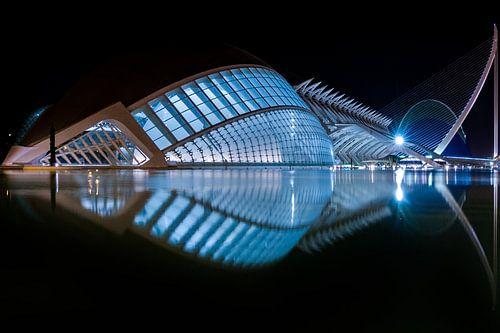 Ciudad de las Artes y las Ciencias, Valencia, bij nacht