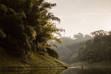 Zonsopgang in de  jungle  Khao-Sok Thailand van Wianda Bongen