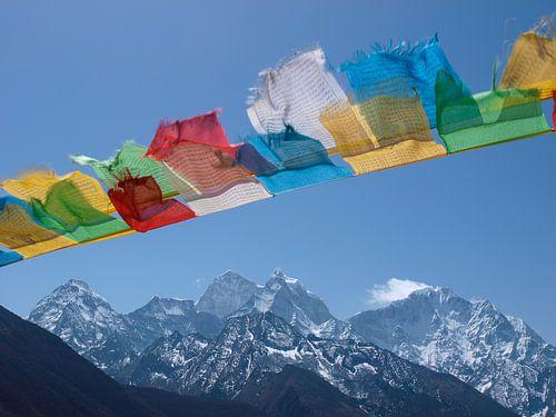 Boeddhistische gebedsvlaggen in de Nepalese Himalaya van
