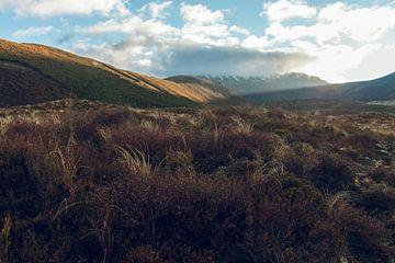 Tongariro Crossing in Nieuw-Zeeland bij zonsopkomst van Linda Schouw