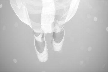 Dromerig Ballet van Maikel Brands