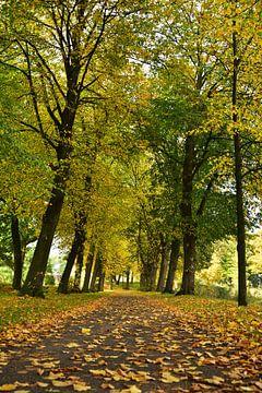 Herfst van Rika Roozendaal