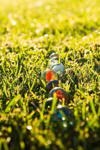 Knikkers in het gras, in het licht van de ondergaande zon.