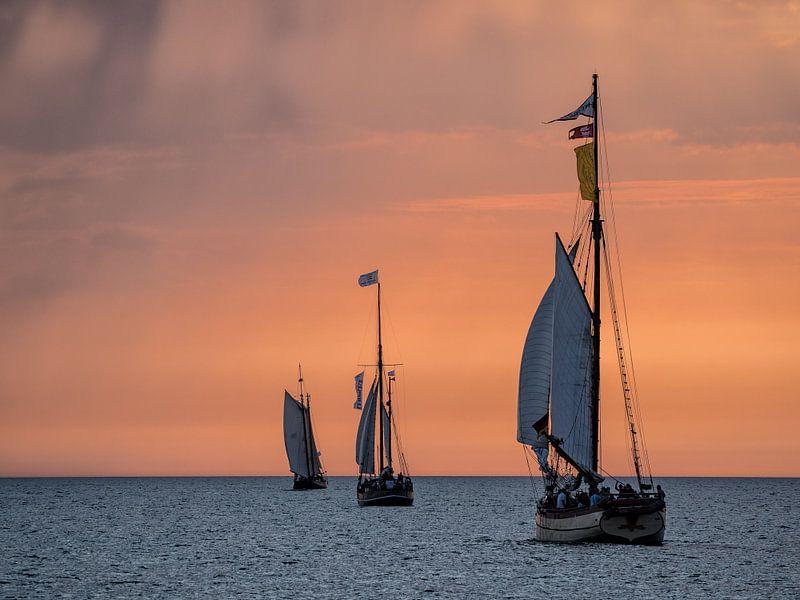 Sailing ships on the Hanse Sail sur Rico Ködder