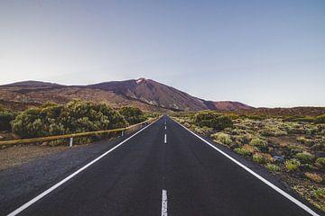 De weg naar de punt van de Vulkaan El Teide van Dimitri van Beerschoten