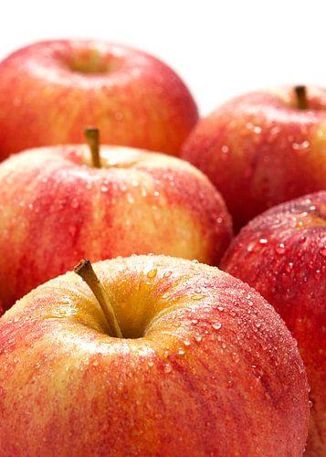 fruit0405a