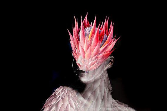 Tropical protea flower van Dreamy Faces