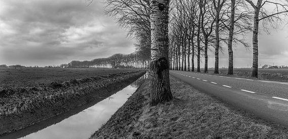 Black and White Landscape van Henk de Boer
